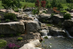 the_upper_koi_pond_waterfall (1)